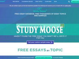 StudyMoose.com service review