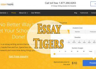 essaytigers service review