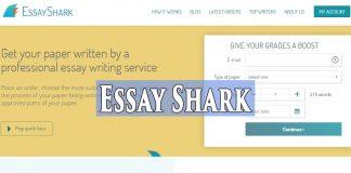 essayshark review