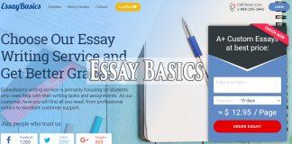 essaybasics review
