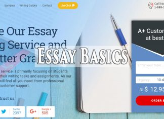 essaybasics
