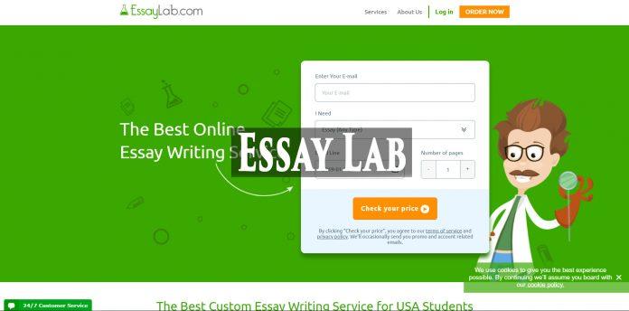 essaylab review