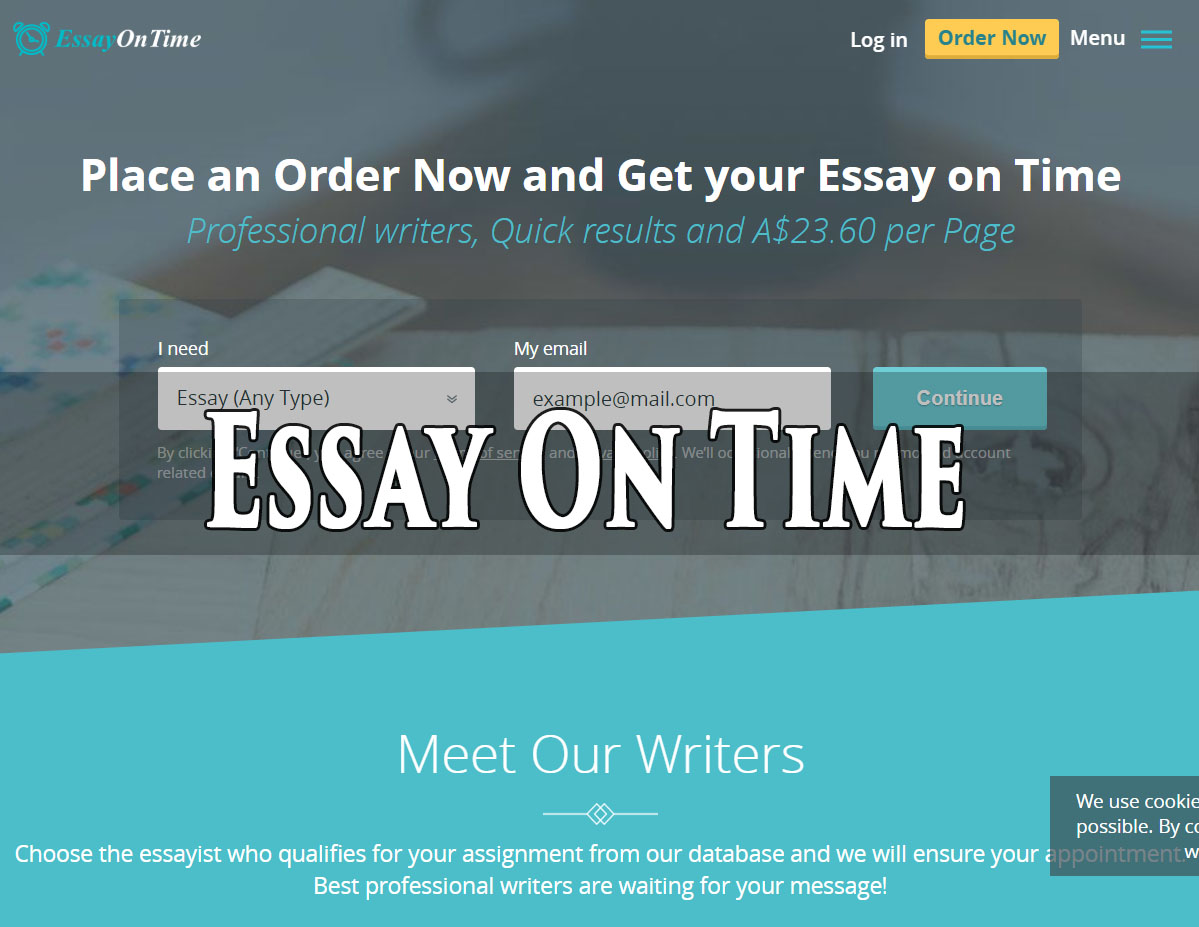 Essay writer service review